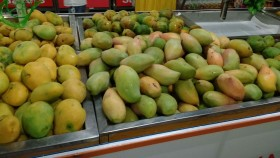 India resolves mango export concerns