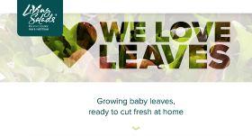 New website for Living Salads