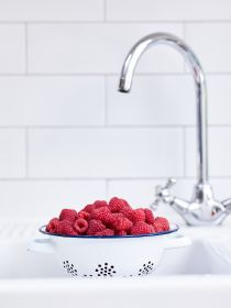 Healthy snacking drives berry sales