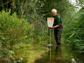 Vitacress helping to tackle river phosphate levels