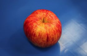 GP Graders advances apple tech