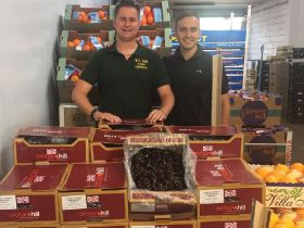 UK supplier begins cherry exports to Dubai and Spain