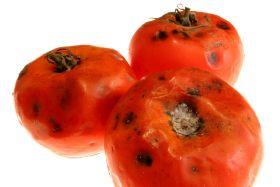 Clay 'boosts fresh produce shelf life', researchers claim