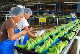 Mexico edges closer to Chinese banana access