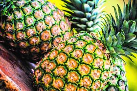 Brazil mulls pineapple potential