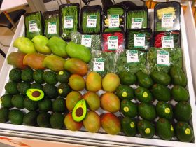Kenyan avo exporter to diversify into oil