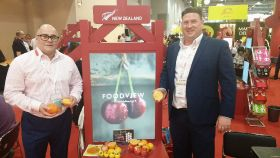 NZ persimmons stand up to the test