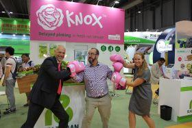 Knox glove