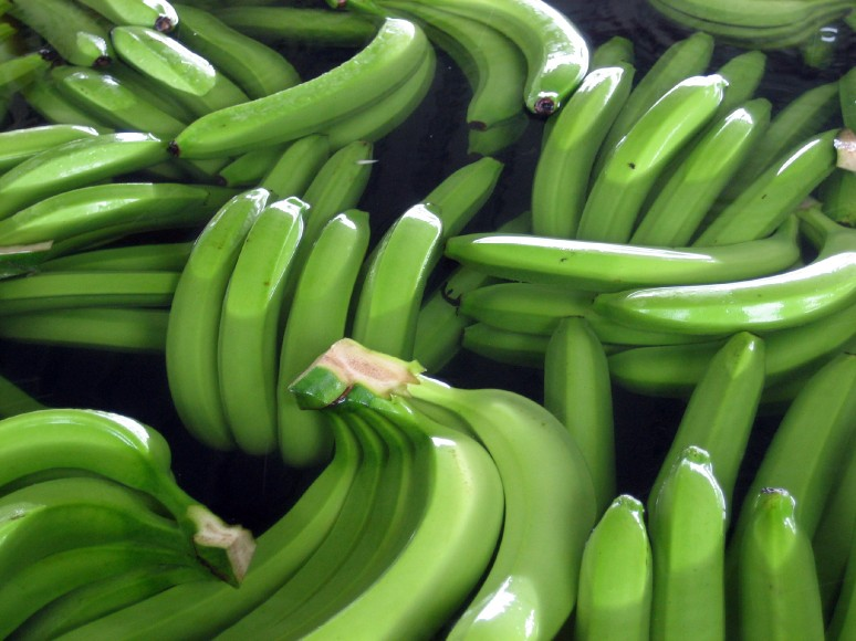 Ecuador sends more bananas to Russia