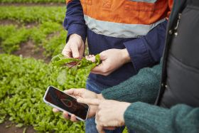 Growing appetite for on-farm data