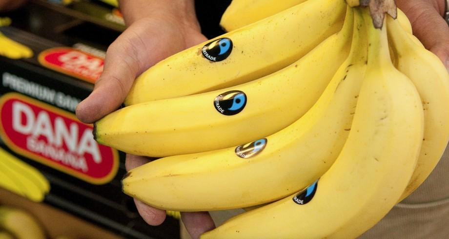 Fair Trade Bananas Whole Foods