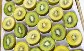 Kiwifruit Vine Health praises BMSB action