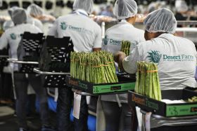 Desert Farms launches organics line