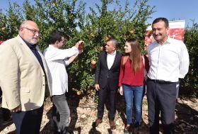 Mollar de Elche kicks off new campaign