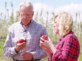 Washington apples star in their own show