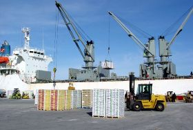 Decofrut unveils new tool for US importers