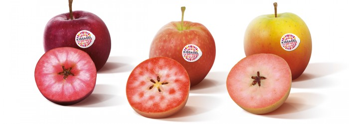 Kissabel: new brand for red-flesh apples