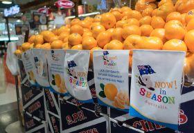 Australian citrus exports climb