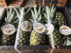 Malaysian pineapples enter China