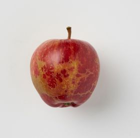 Morrisons launches wonky apples hit by spring frosts