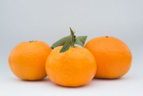 Citrus category heating up says CGI