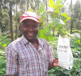 Bean wilt research set to boost Kenyan supply