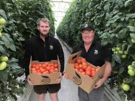 Retractable roof tomato operation opens