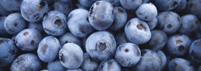 New committee for Huelva blueberries