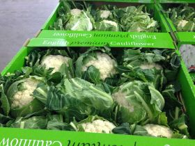 Veg grower exports caulis to Europe