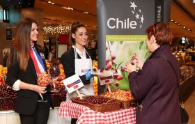 Chile kicks off Spanish promotion
