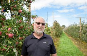 Top NZ apple and pear breeder retires