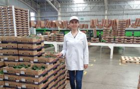 Cabilfrut ships first RA-certified avos to Europe