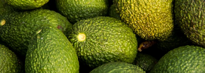 Greencell unveils innovative new avocado packaging