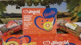 Jingold's red kiwifruit signals further innovation