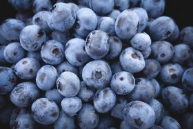 Chile to home in on Spanish blueberry market