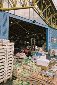 Site chosen for new wholesale mega-market