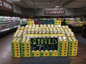 SunGold boosts Zespri in North America
