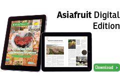 AF Digital Edition