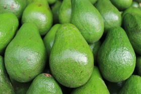 """Remarkable expansion"" in avo consumption"