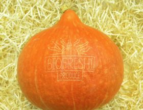 Organic pumpkins join laser movement