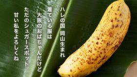 Edible-skin bananas increase in production