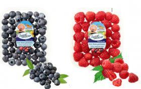 SanLucar creates berry buzz