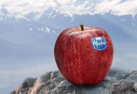 VOG promotes Marlene apples