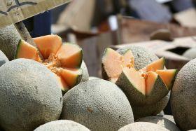 Rockmelon sales plummet 90 per cent