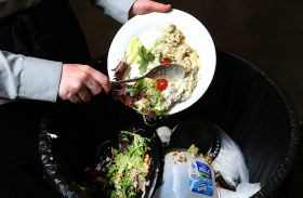 "Food waste often ""very logical"" study says"