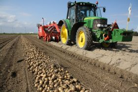 Agrico chips in with potato price rise