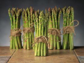 Michigan asparagus season 'promising'