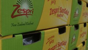 Zespri posts record revenue