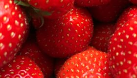 Chambers doubles strawberry sales