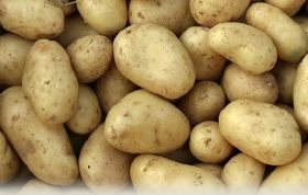Potatoes voted Britain's best loved veg